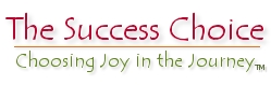 The Success Choice - Choosing Joy in the Journey